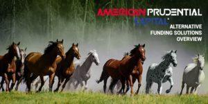 American Prudential Capital